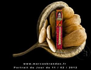 Portrait-du-Jour-2012-02-11