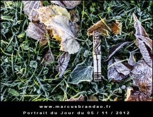 Portrait-du-Jour-2012-11-05