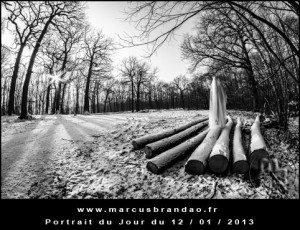 Portrait-du-Jour-2013-01-12