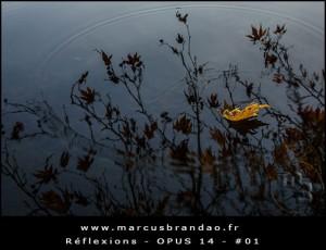 Reflets-et-Reflexions-Opus-14-01