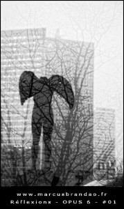 marcus-brandao-reflets-et-reflexions-opus-06-01