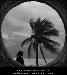 marcus-brandao-reflets-et-reflexions-opus-11-01
